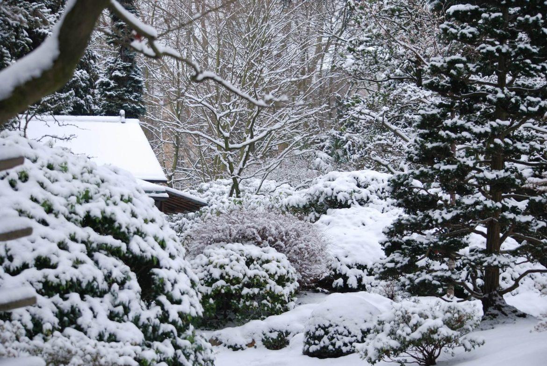 Tips voor een sfeervolle wintertuin