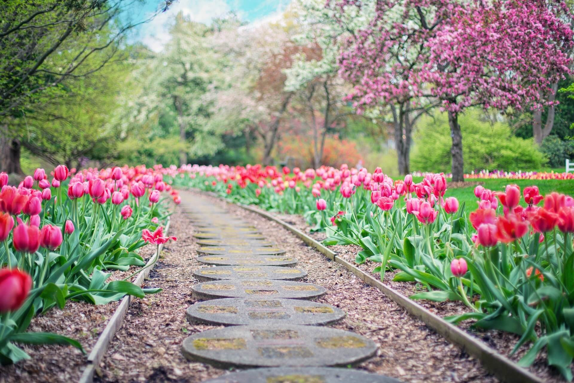Tuin bekijken en inspiratie opdoen